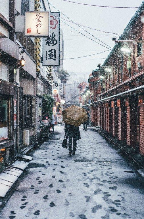 tumblr pmo5qggye41qz6f9yo3 540 - Découvrez les somptueuses photographies de Tokyo enneigée par Yusuke Komatsu