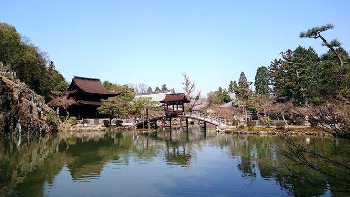 gifu2 - Au Japon, un homme nu est arrêté en pleine rue ; il nie les accusations en expliquant faire un entraînement spirituel