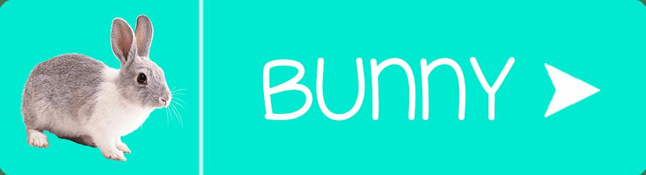 FurbabySocks Rabbit Button
