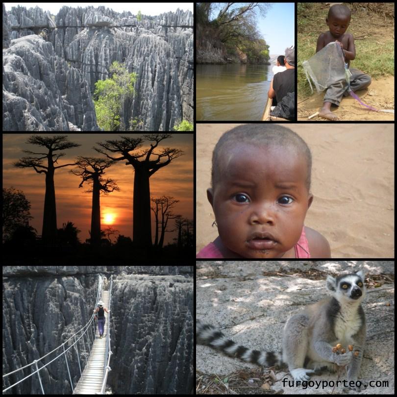 Madagascar...jpg