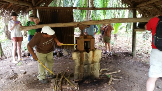a manual sugar cane press!