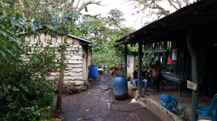 the home and kitchen of limonaria