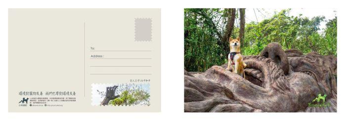 postcard_11