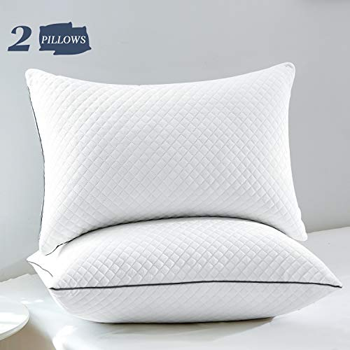 "GOHOME Bed Pillows for Sleeping 2 Pack, Luxury Down Alternative Pillows with Soft Velvet Fabric, Full Size Sleeping Pillows for Side and Back Sleeper, 20""x30"" Queen Size"