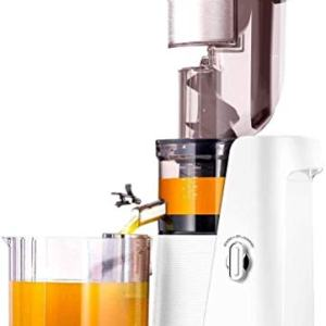 SKG A10 Slow Masticating Juicer Wide Chute Cold Press Anti-oxidation BPA Free High Volume Easy to Clean - White