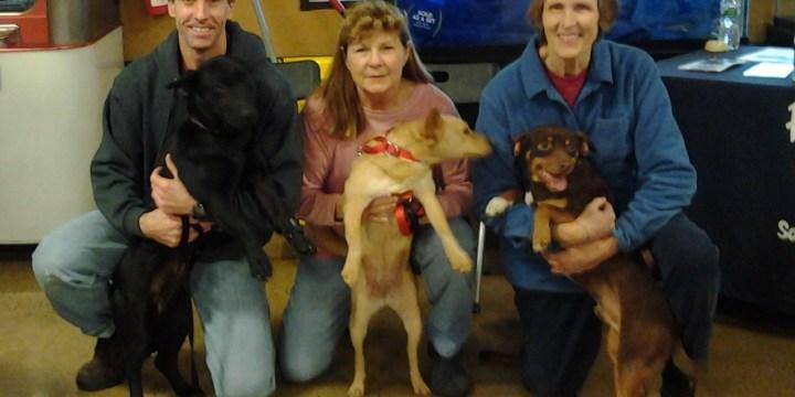 Petsmart Harrisburg Christmas Eve Meet and Greet