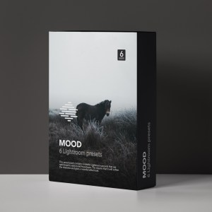 Mood presets for Adobe Lightroom by Furstset