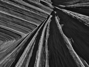 Wave Monochrome #8
