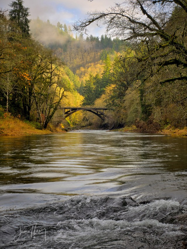 Fall on the Wilson River