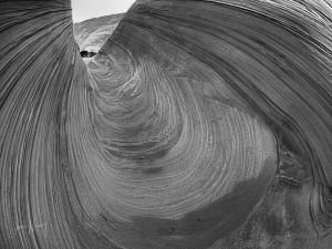 Wave Monochrome #6