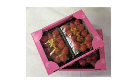甘熟いちご「紅ほっぺ」 イメージ