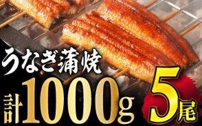 【数量限定】ふっくら肉厚うなぎ蒲焼5尾