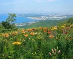北海道石狩市のふるさと納税のご紹介