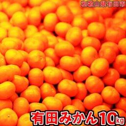 有田みかん「未来への虹」10kg