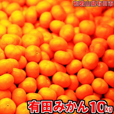 有田みかん「未来への虹」10kg イメージ