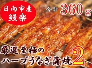 宮崎県日向市産・鰻楽ハーブうなぎ蒲焼2尾