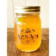 【第10位】高知県産天然はちみつ500g【最高蜂】