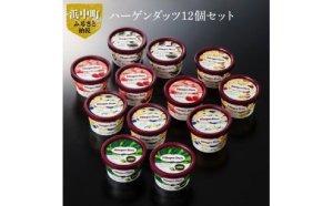 【第6位】北海道浜中町の牛乳使用!ハーゲンダッツ 12個セット