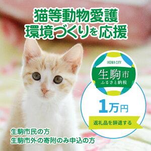 生駒市は、猫の殺処分ゼロを宣言します! イメージ