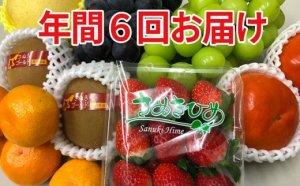 讃岐のフルーツ 年3回配送 寄付金額30,000円