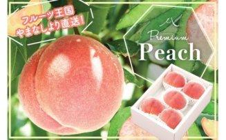 日本一の桃の産地 山梨より直送!『完熟特選もも2kg』