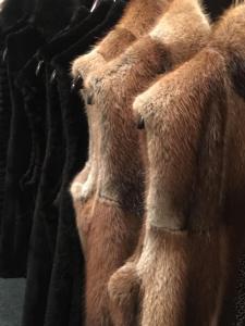 Luxurious Muskrat and Beaver Fur Vests