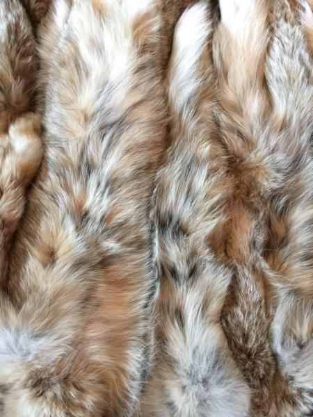 Luxurious Wild Lynx Pelts