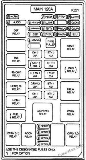 Fuse Box Diagram > KIA Sedona  Carnival (20022005)