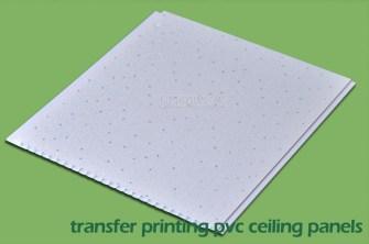 Printing PVC Wall
