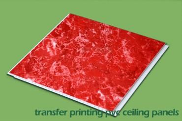 Printed PVC Panels