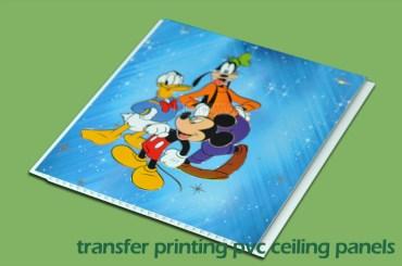 Transfer Printing PVC Ceiling