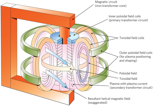 Schematic of a tokamak.