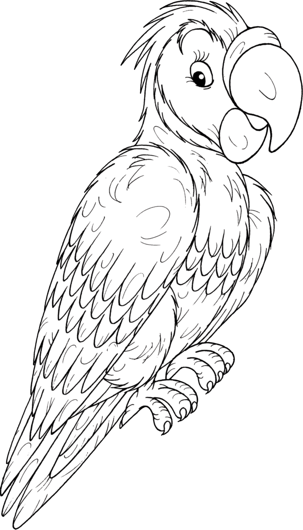 parrot-before.png