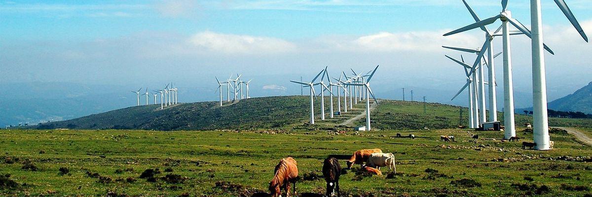 Energías verdes y medioambiente - Fusión Ingeniería - Cataluña