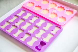 Pink and purple paw and bone shaped moulds full of frozen dog treats