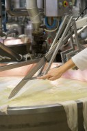 Cutting the compressed curds at the bottom of the vat when making Grana Padano PDO