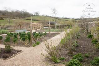 River Cottage HQ kitchen garden