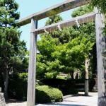 神秘的な鳥居『木嶋坐天照御魂神社』