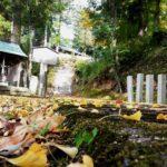 色づき始めた秋の社『須賀神社』