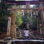 『謹賀新年』深田部神社