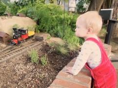 Eddie watching the trains.