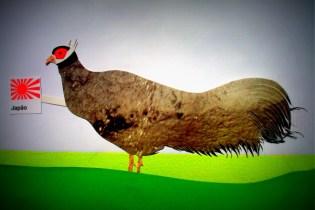 ARTE: Lais Sobral: www.flickr.com/photos/lais-sobral/