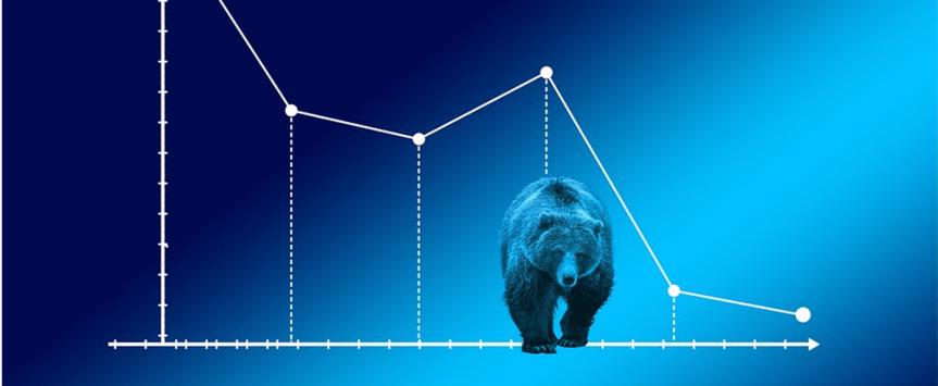 bear market profit 1