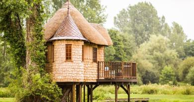 6 Tips for Building An Eco-Friendly TreeHouse
