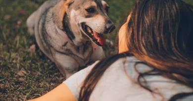 Eco-Friendly Tips to Raise a Dog in a Sustainable Way