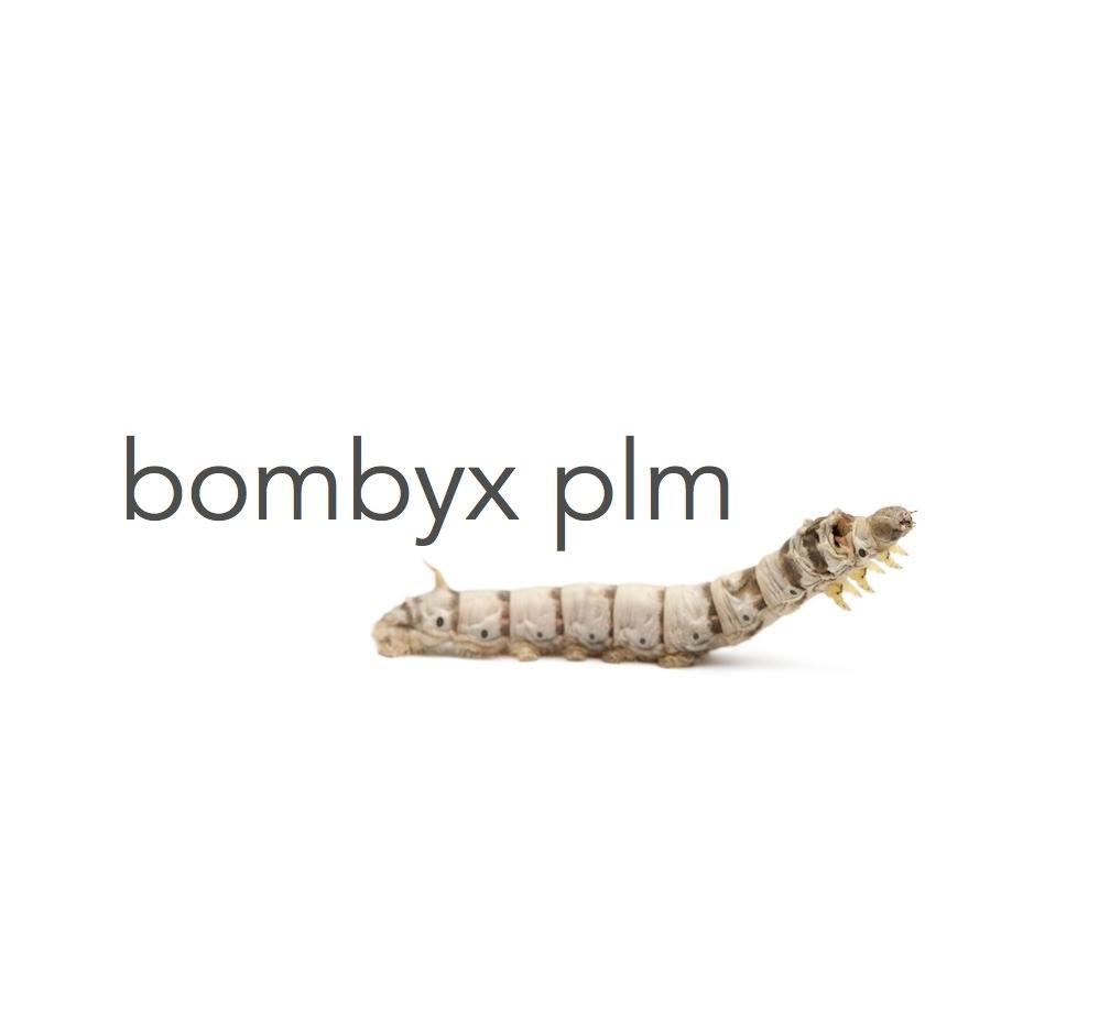 Bombyx PLM company logo