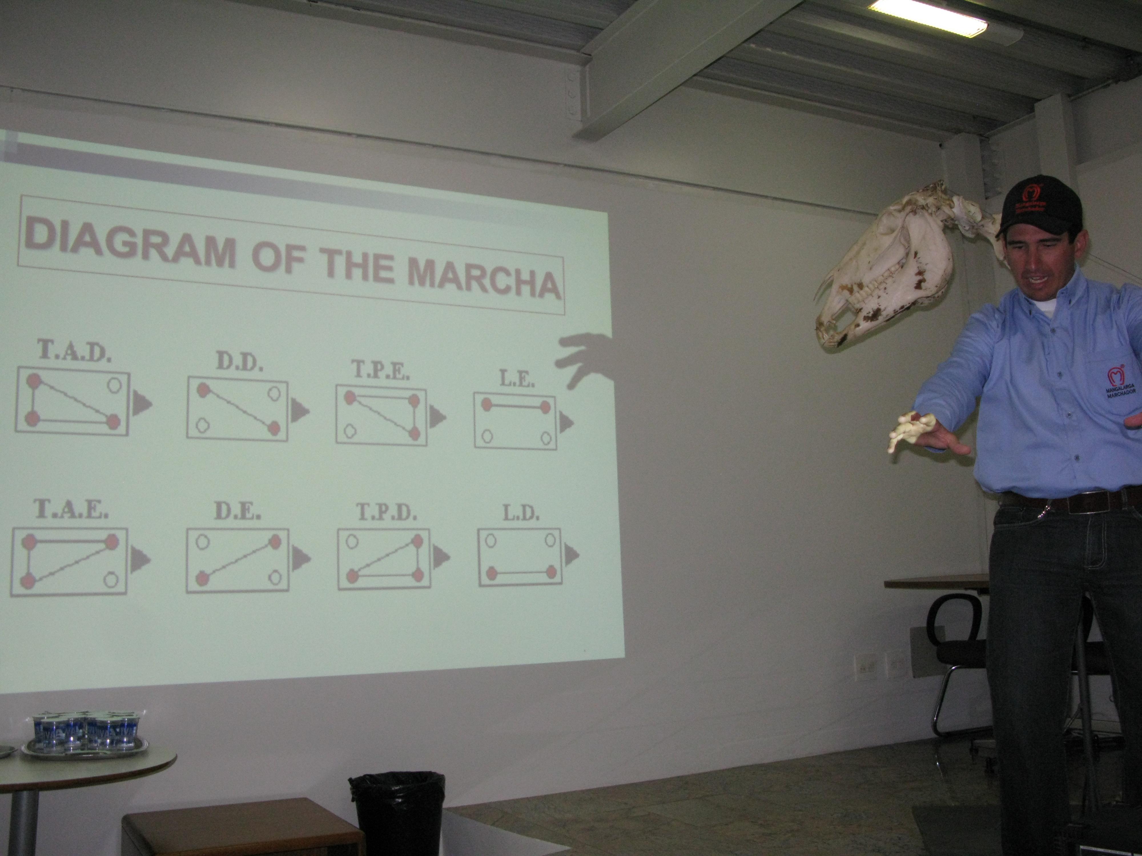 Tiago Marcha