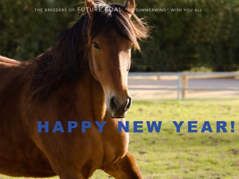 2015 new year card.001