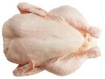 the new chicken
