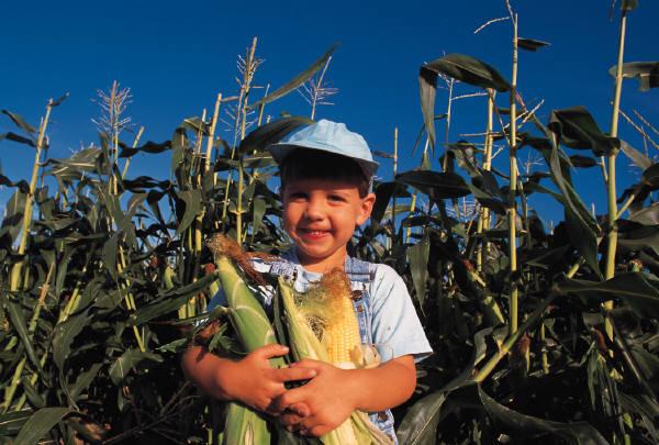 Farmer of the future